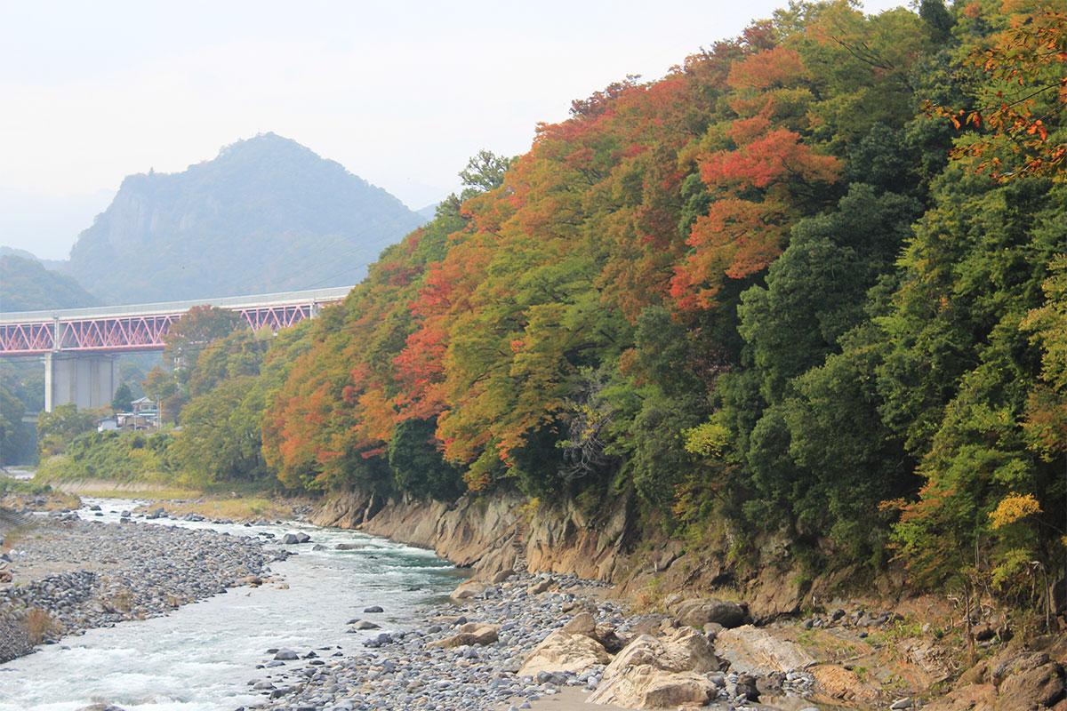 桂川の眺め