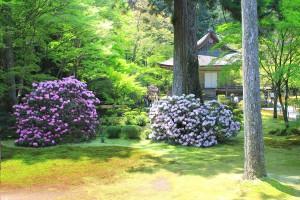 有誠園と往生極楽院