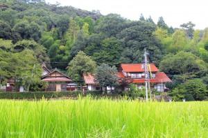 大日寺遠望