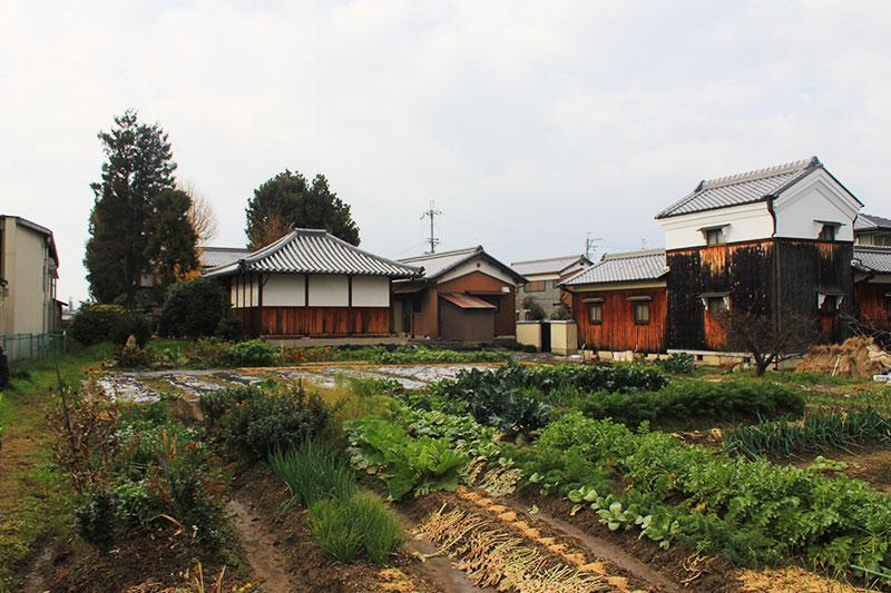 正覚寺へ畑の中を歩く