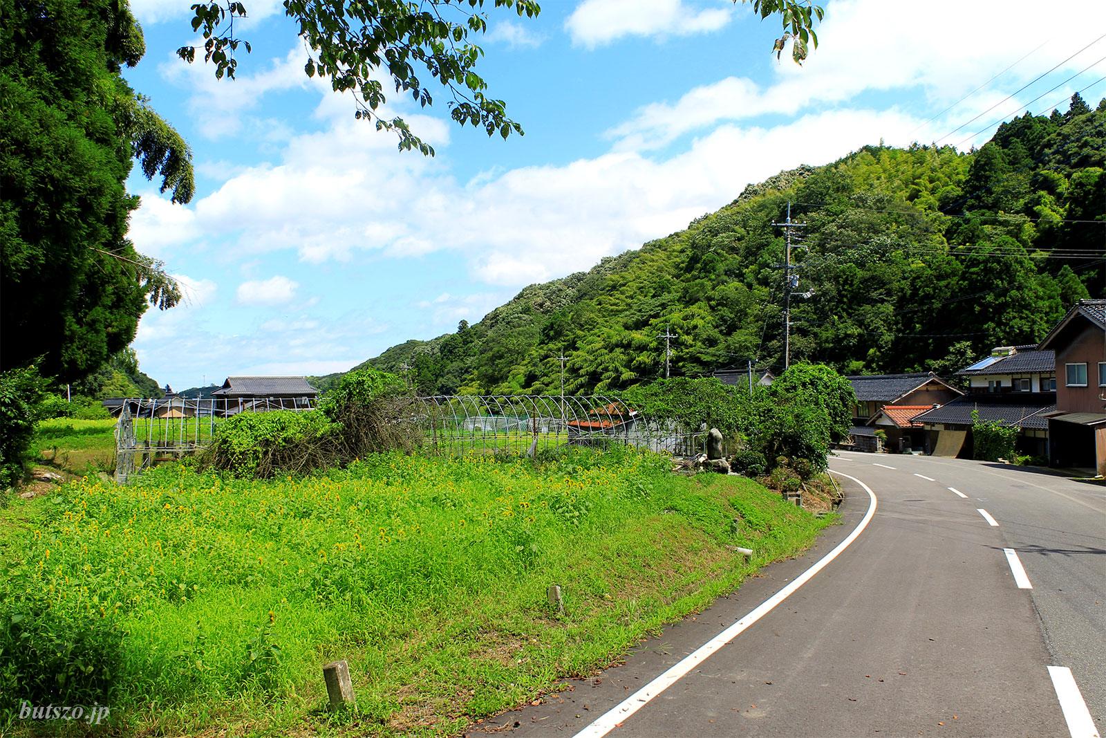 お寺の前の道